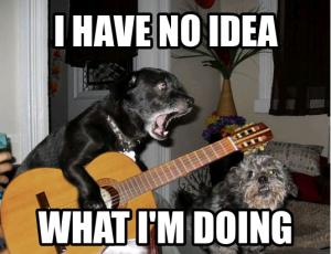 guitar-dog